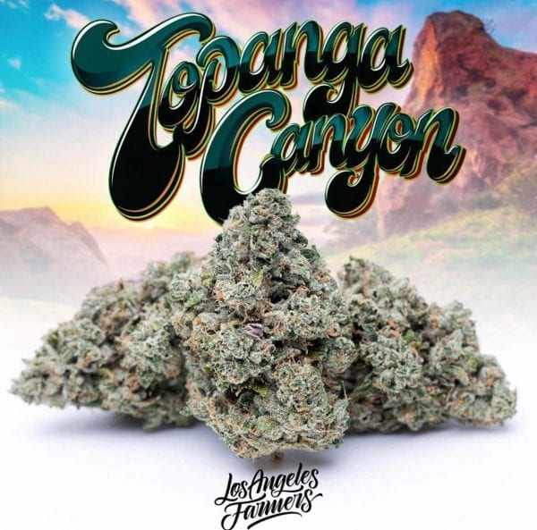 TOPANGA OG at whiteruntz.co
