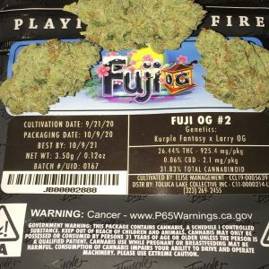 Buy Fuji OG by jungle boys online